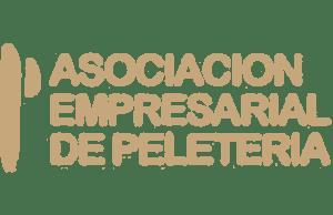 logo-aep-300x194